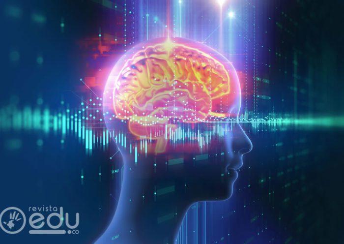 Neuromitos en la educación: Creencias sin soporte científico en padres de familia y docentes