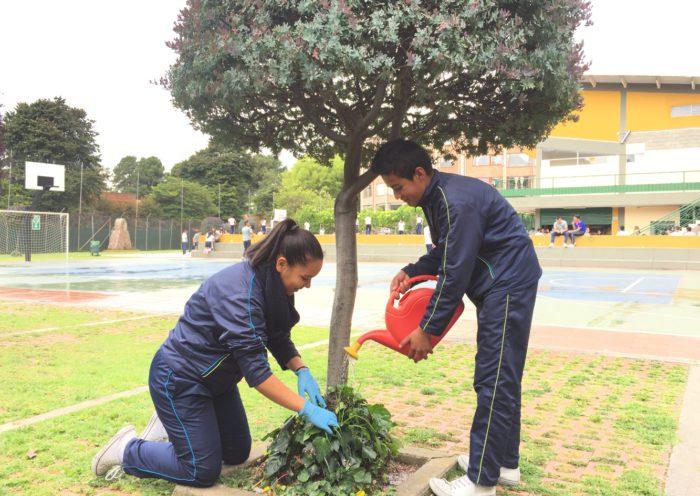 Educación ambiental a través del arte en el Colegio Canapro