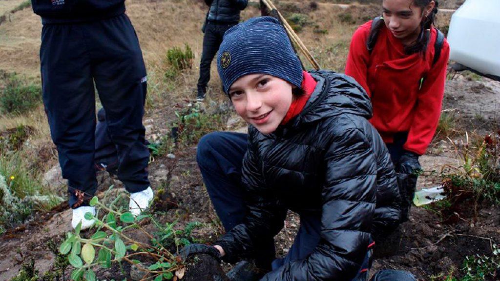 Con siembra de árboles, el Colegio Bilingüe Richmond de Bogotá busca recuperar el Páramo de las Cuchillas