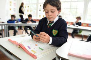 Tareas Escolares: ¿Una Rutina Necesaria o Innecesaria?