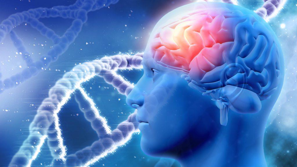 neuromitos-su-influencia-en-el-aula-revista-edu-co