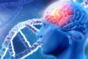 Neuromitos: Su influencia en el aula y en los padres de familia (6ª. Entrega)