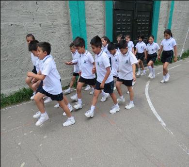 Neuromitos en la Educación. Su influencia en el aula y en los padres de familia (7ª. Entrega)