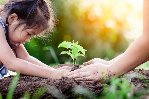 Hacia la educación basada en naturaleza