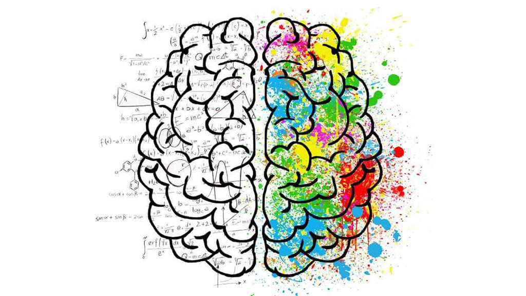 Neuromitos en la Educación Su influencia en el aula y en los padres de familia (8ª. Entrega)